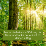 Atemtraining im Wald